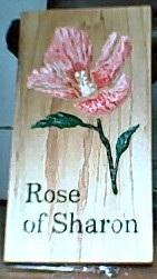 Rose of Sharron oak plaque